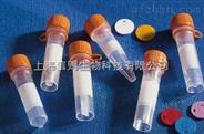 腺泡Acinus抗体