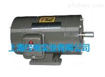 ZYC-190/01,ZYC-190/02,ZYC-190/03永磁直流电机
