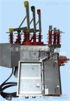 ZW10-12XDG户外高压双电源互投装置
