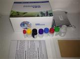 人踝蛋白(talin)ELISA试剂盒