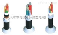 交联电缆YJV22 YJV—0.6/1KV是什么意思《销售处》