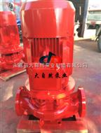 潛水消防泵
