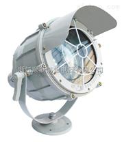 BTD-250/400W防爆投光灯