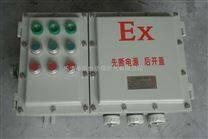 BXD51-6KXX防爆动力配电箱(带总开关)