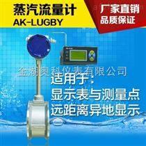 远传蒸汽流量计,远传蒸汽流量计厂家