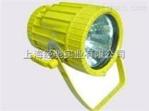 BTC8200 防爆投光灯(70W、150W)