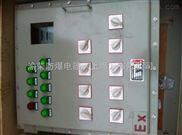 BDG58-宁夏银川BDG58钢板焊接防爆箱按图加工 石嘴山不锈钢防爆配电箱定制