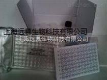 人中性粒细胞趋化蛋白2(NAP-2/CXCL7)ELISA试剂盒