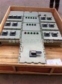 防爆动力配电箱BXD-Q防爆动力电磁配电箱