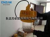 优质150W防爆吊顶灯