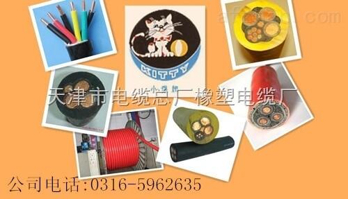 电缆通信电源用阻燃软电缆HYA53通信电缆供应商