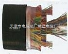 HYAT53铠装通信电缆,HYAT53 10*2*0.9电缆批发价