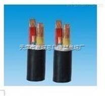 VVR3*10+1*6铜芯电力软电缆