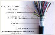 PTYA23铁路数字信号电缆