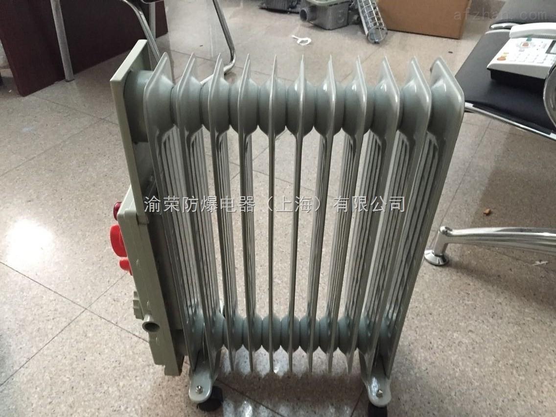 bdr 上海渝荣防爆电暖器特价销售