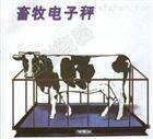 养鸡场称家禽秤,称家禽的电子秤,家禽称重秤可定制