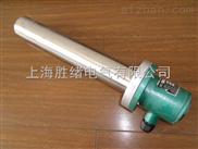 BGY8防爆电加热器