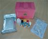 人发动蛋白2(DNM2)ELISA试剂盒