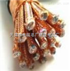 DJFPFRP22电缆厂家耐高温铠装软电缆 DJFPFRP22小猫价格