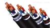 铝塑带屏蔽变频电缆 BP-VVP3
