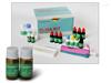 犬脂蛋白關聯磷脂酶A2(LpPLA2)ELISA試劑盒